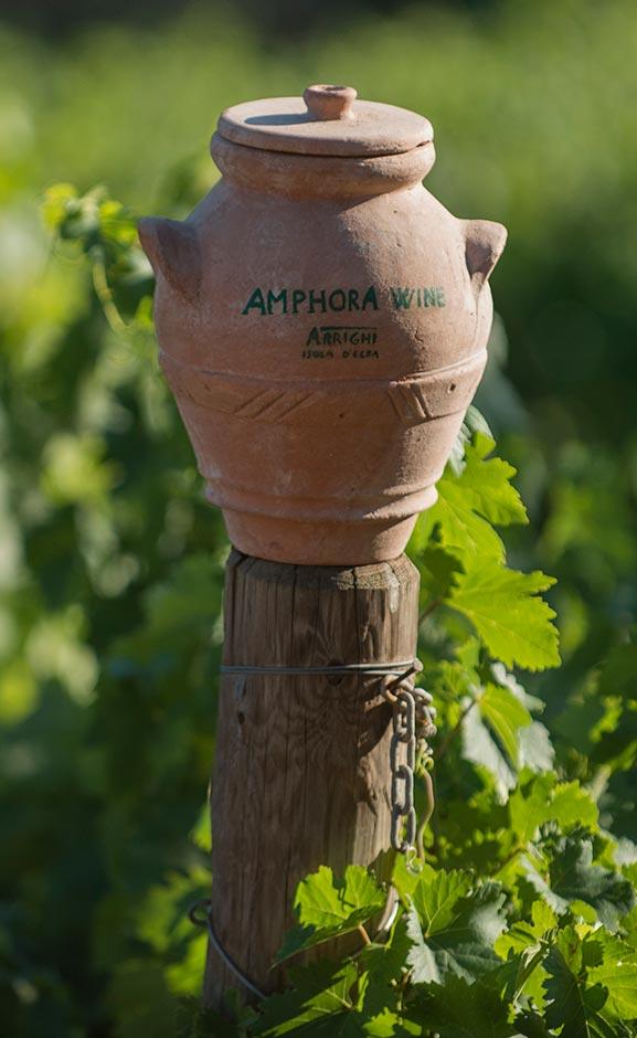 Amphora Wine