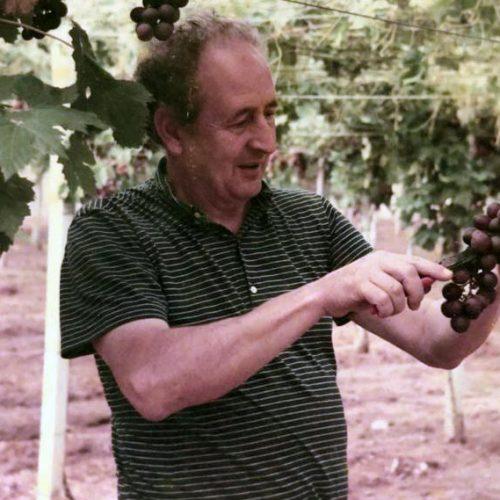 Sergio Arrighi