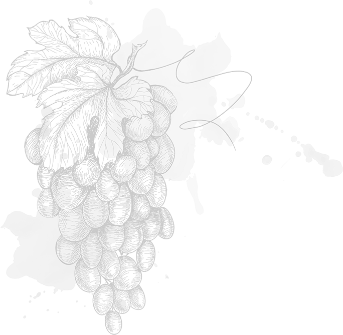 Sfondo uva